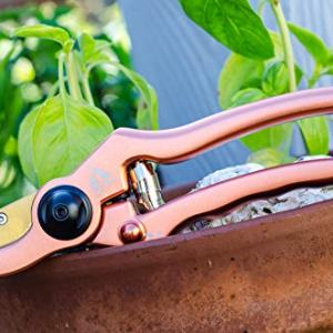 Mtn Tree Professional Grade Solid Aluminum and Titanium Bypass Garden Shears Your listing of chores to do that weekend is a mile lengthy and you do not wish to be out in the yard, bent over your backyard for hours on-end. You are not trying ahead to the backache or the hand ache related to getting these bushes to look simply the means you want.