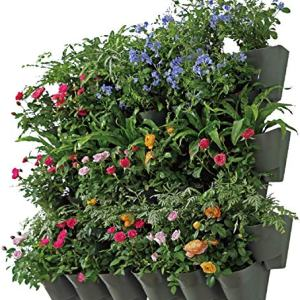 Worth Indoor Outdoor Vertical Wall Hangers with Pots Included Wall Plant