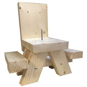 Squirrel Feeder Picnic Table - Hand Made in USA - Uses Corn Cob or Apple for Fun Squirrel Dining