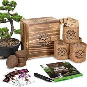 Bonsai Tree Seed Starter Kit - Mini Bonsai Plant Growing Kit, 4 Types of Seeds, Potting Soil, Pots, Pruning Shears Scissor Tool, Plant Markers, Wood Gift Box, Indoor Garden Gardening Gifts Idea