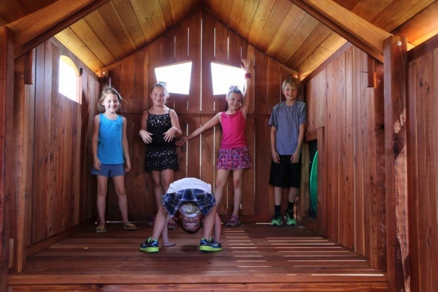 accessories, dream, Fort Ticonderoga, kids, playset, swing set, treehouse, Tri-Level