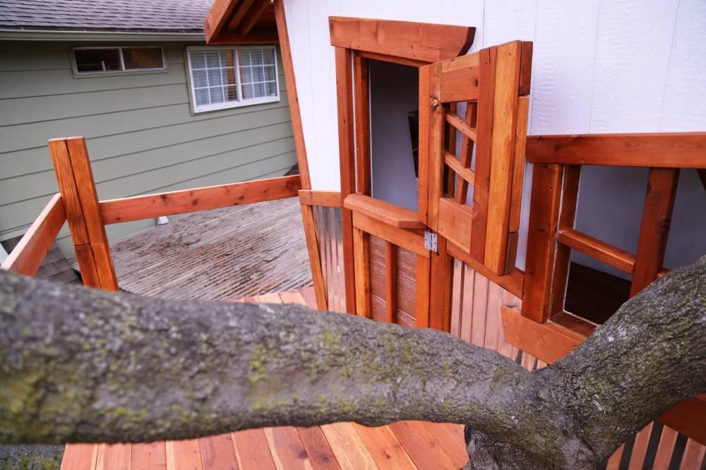 dutch door, whimsical tree house, crooked windows
