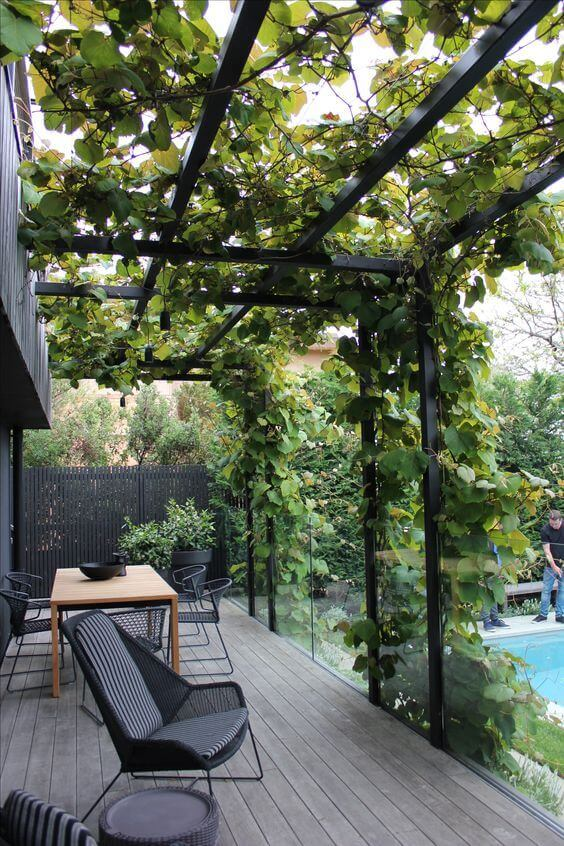 31 flower worthy covered trellis patio