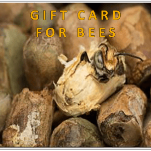 Gift Card for Bees + REDEEM Your Gift