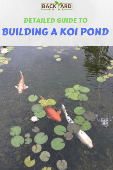 Detailed Guide To Building A Koi Pond Easily 10