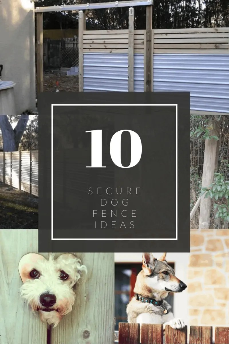 10 Secure Dog Fence Ideas Backyardscape
