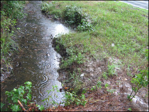 HB 1774 would give credits for projects using water from roadside drainage ditch like this one in Mathews County.