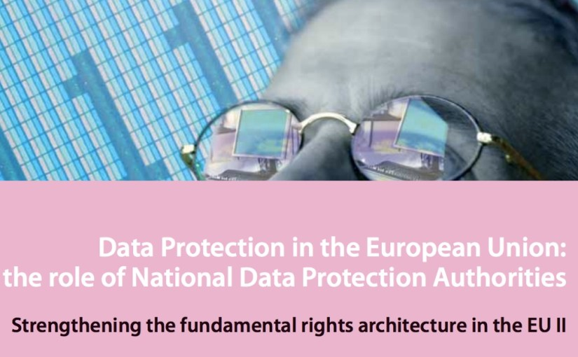 Data Protection in the European Union: the role of National Data Protection Authorities