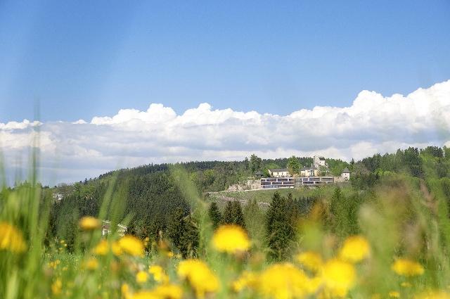 Burg Bad Kreuzen und Schatz.Kammer Jugendhotel