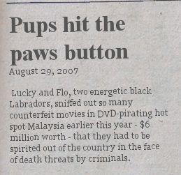 paws-button