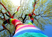 Yarnbombing - Graffiti Knitting 1