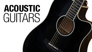 Permalink to: Badger Acoustic guitar
