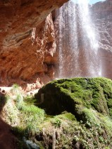 Ribbon Falls mossy ledge