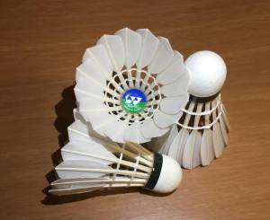 "What is a Badminton Birdie? The ""Ball"" of Badminton, Explained."