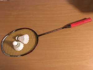 Badminton Vs Tennis: What's the Difference?