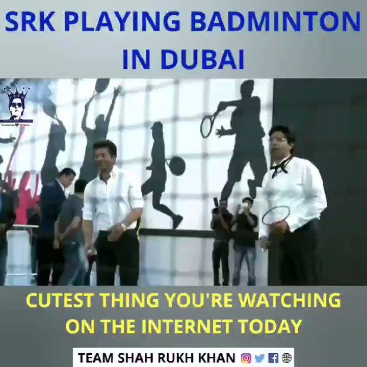 QQ2XH1598aKOuwGQ - Throwback King Shah Rukh Khan Playing Badminton in Dubai, CUTEST THING YOURE WATCHING ON THE INTERNET TODAY ShahRukhKhan TeamShahRukhKhan