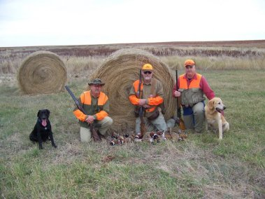 pheasant-hunting_2697655080_l