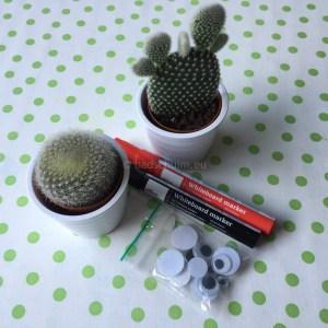 Cactus vriendjes I DIY met stappenplan te vinden op het creatief lifestyle blog Badschuim