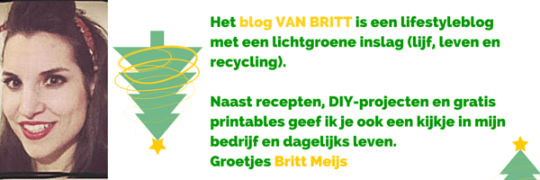 Britt Meijs van VanBritt_deelnemer van de BDIYC