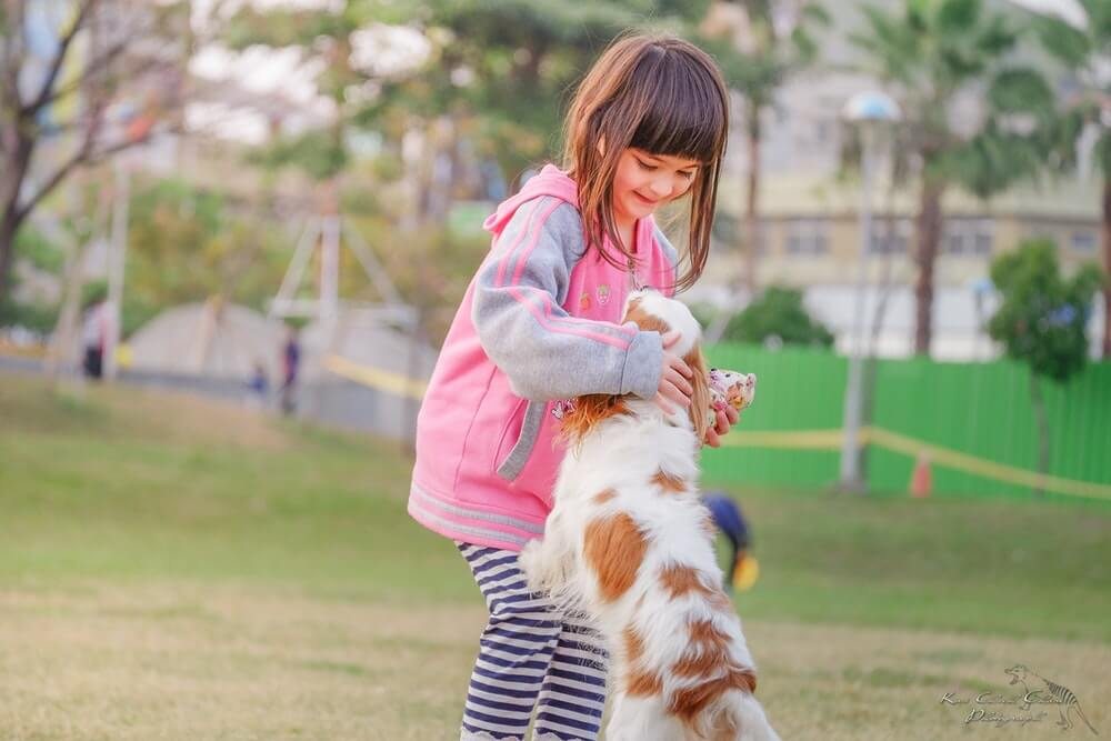Een huisdier in huis nemen met kinderen?
