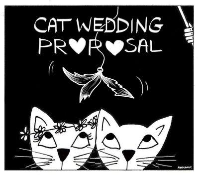 catweddingproposalphoto7-1
