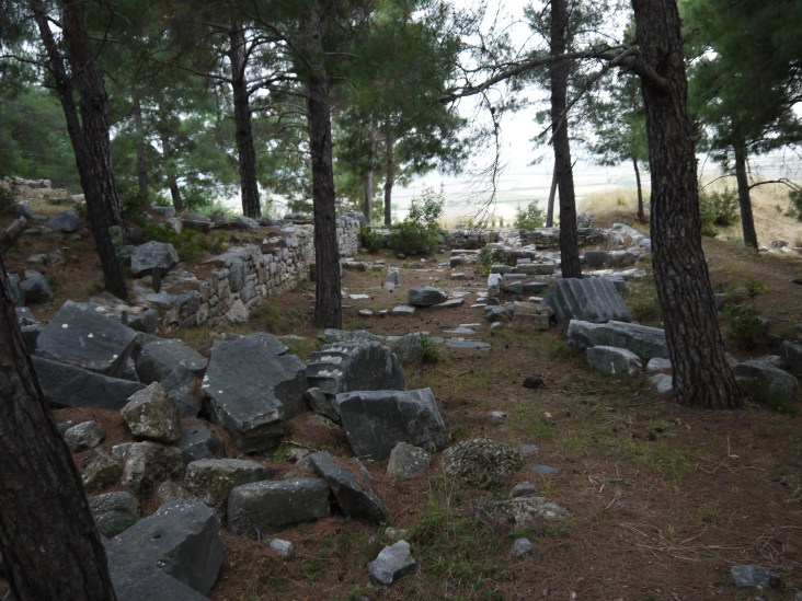 Ruins of private houses in Priene - the plains in the background used to be the sea
