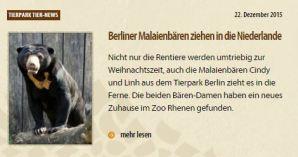 tp malaienbären holland