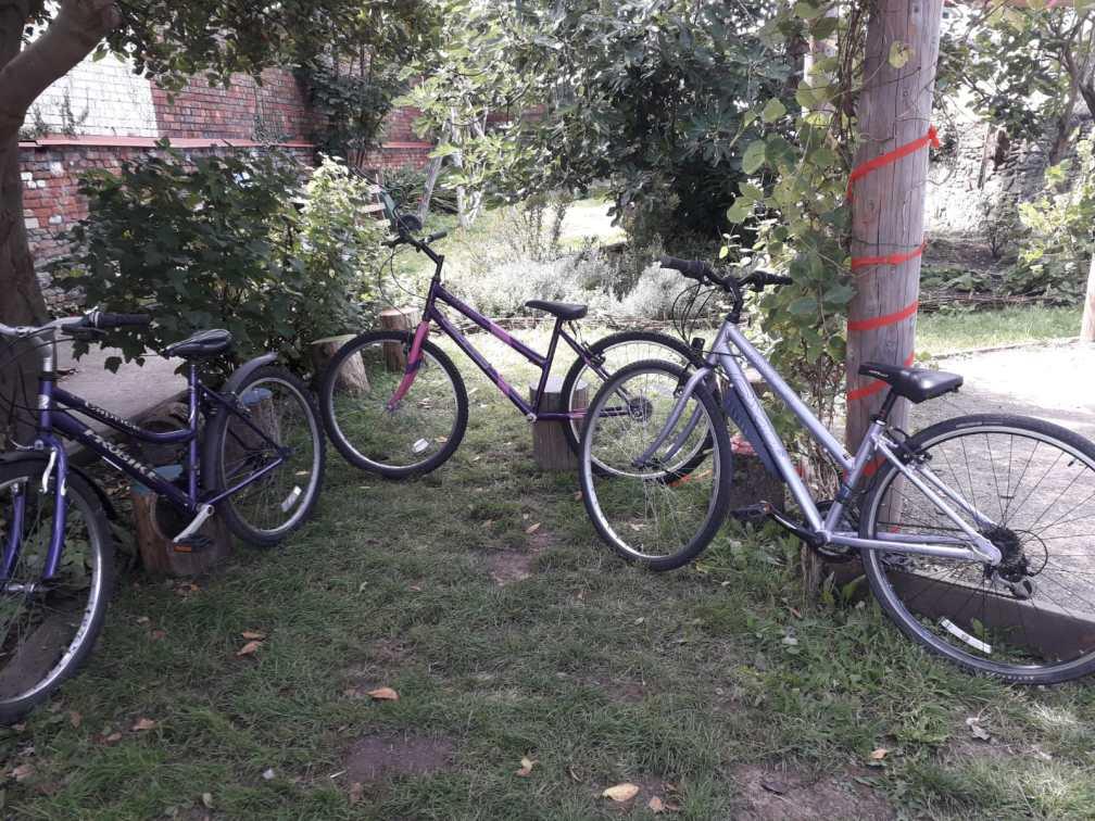 Bikes at Baggator Bike Clun