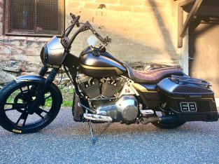 1999 Road King Custom Industrial Performance Bagge