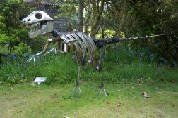 Veló-ciraptor