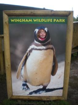 Return of 'The Penguin'