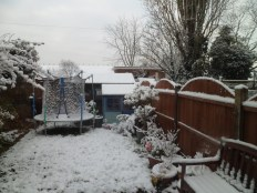 A bit cold for the trampoline