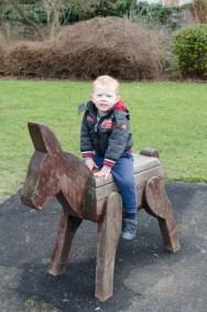 Ezra on a donkey