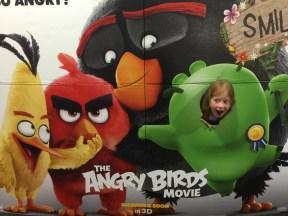 Angry bird!