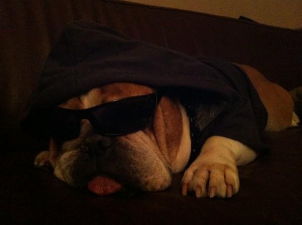 James Gangster 3