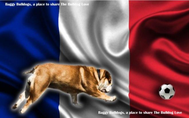 frankrijk_vlag