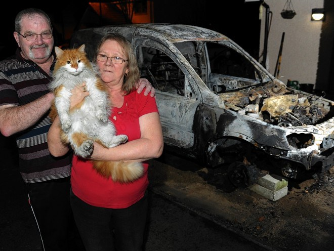 Hero Cat J Lo Saves Humans From Fire