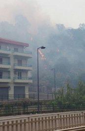 Incendi-Palermitano-1-327x505