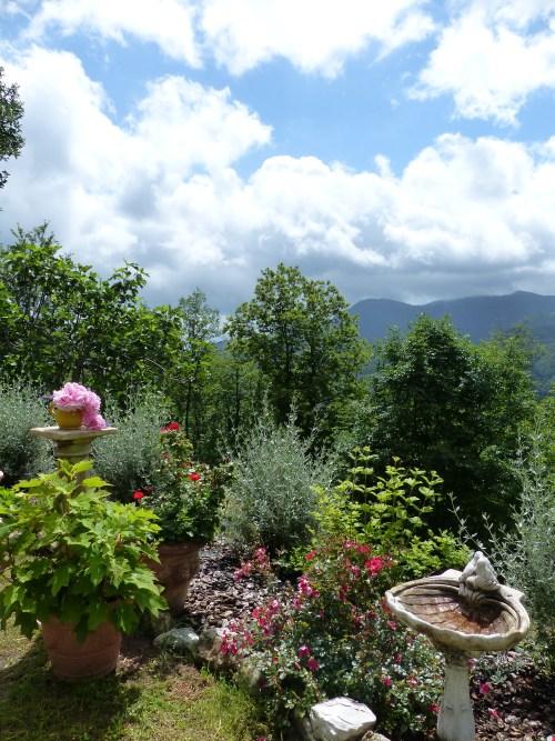 The garden at Casa Debbio