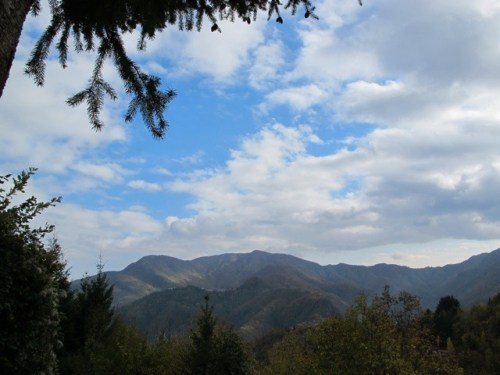 20111103-095112.jpg