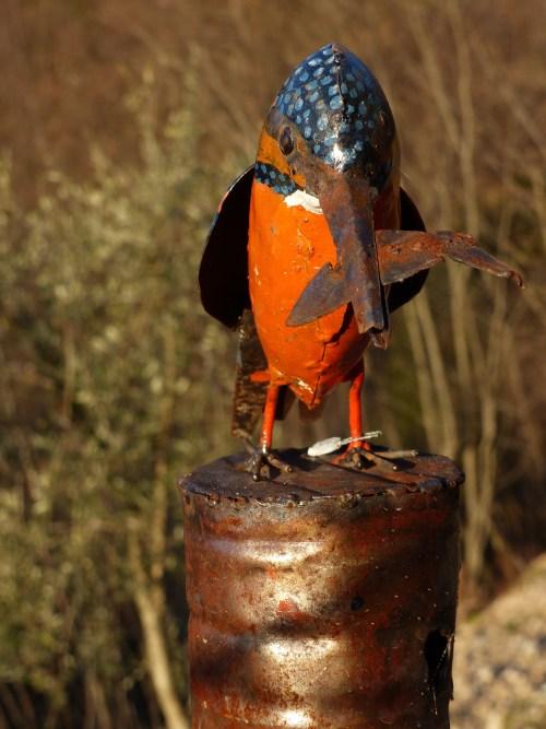 Casa Debbio bird