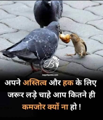 जीवन में हर इंसान को अपने हक और अस्तित्व के लिए जरूर लड़ना चाहिए good morning inspirational quotes in hindi