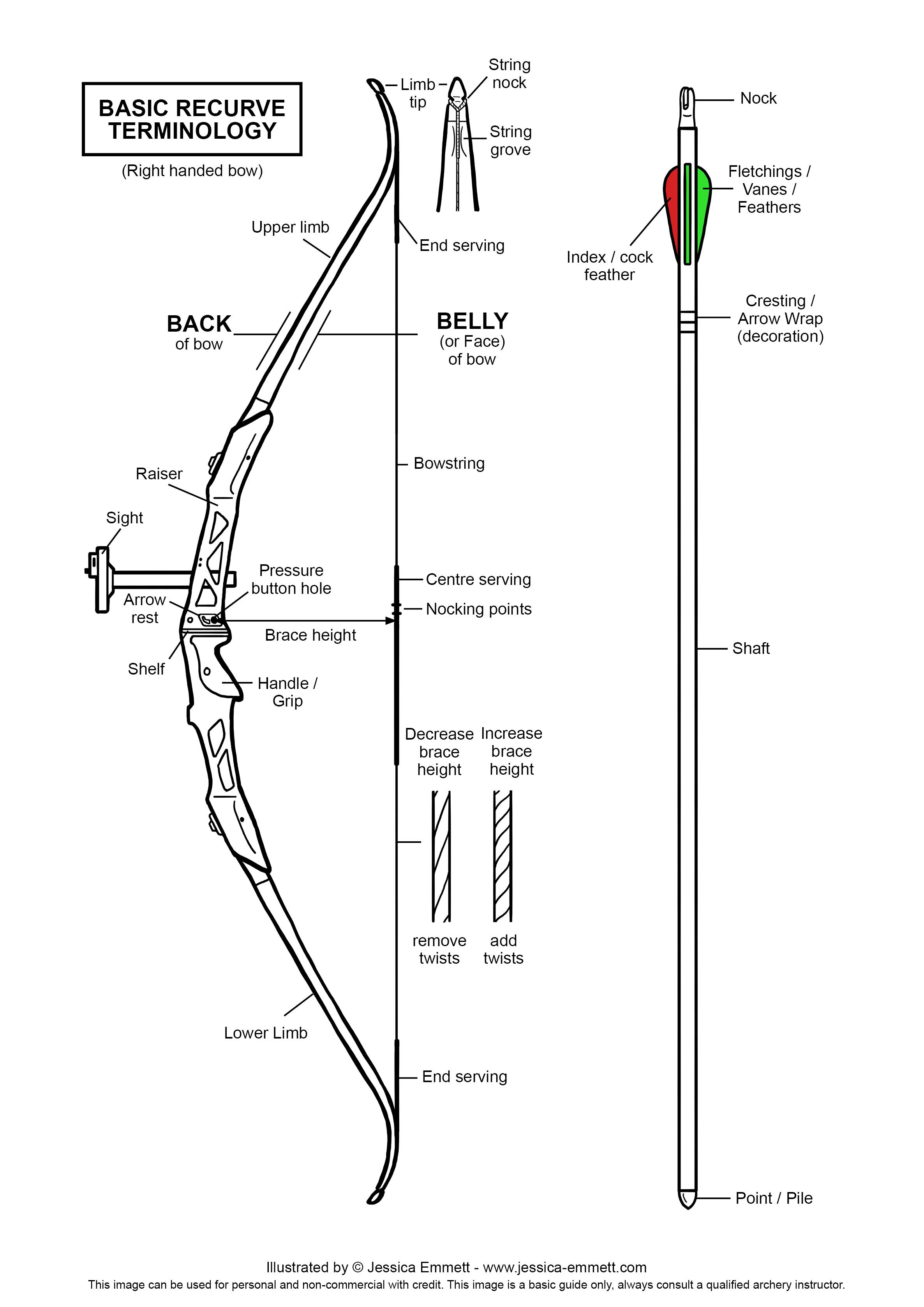 Archery Basics Illustrated