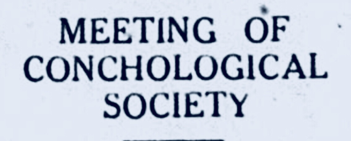 Conchological Society Of New Providence Bahamianology