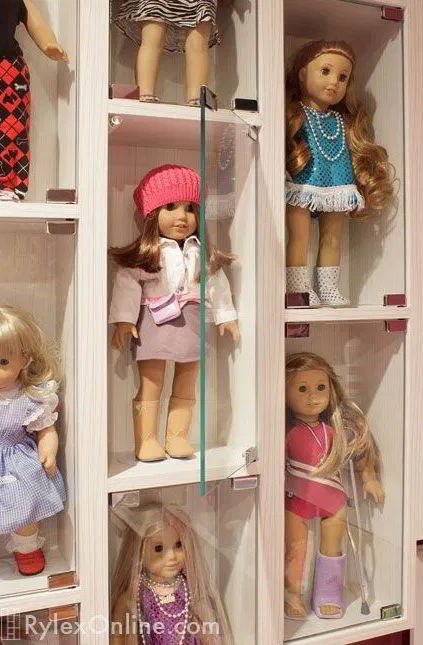 Display Case for Doll Collections