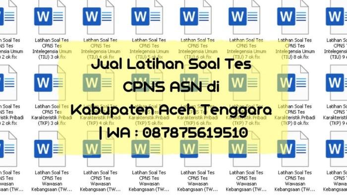 Soal Tes CPNS ASN di Aceh Tenggara