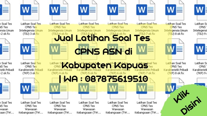 Soal Tes CPNS ASN di Kabupaten Kapuas