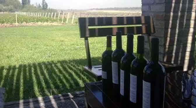Bodegas de Mendoza, el paraíso del vino