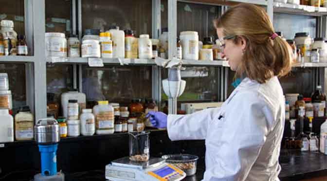 El INTI elabora un aditivo protéico, natural y funcional para alimentos