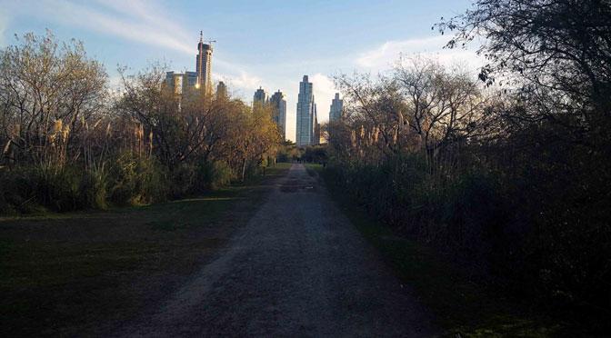 «Skyline» de Puerto Madero desde el interior de la reserva ecológica de Buenos Aires